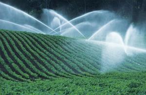 irrigazione vigneti